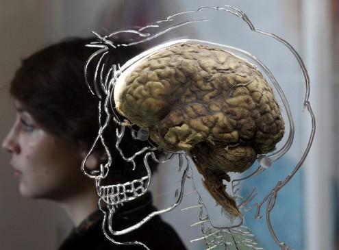 A Sleeping Brain Can Be Avoided By Taking Mental Breaks