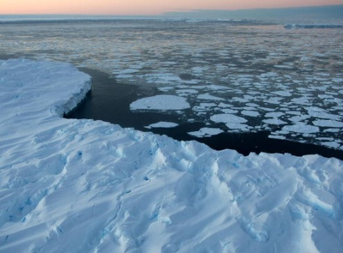 Harvard Law Students Organizes Event About Impact Of Climate Change