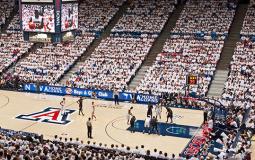 Arizona basketball