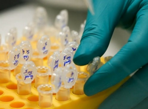 Microsoft Adds More 10 Million DNA Strands For Data Storage [Video]