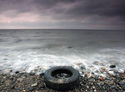 UC Davis Study Reveals How Marine Animals Are Dissolving Due To Warm, Acidic Waters [Video]