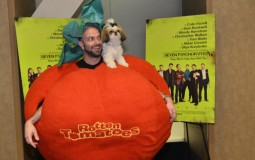 Rotten Tomatoes Needs a New Line of Film and TV Critics