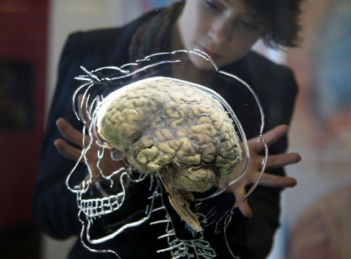 UCL Study Shows Human Brain Prevents Us From Using Other People For Our Own Good [VIDEO]