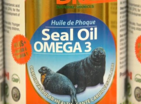 Study Shows Seal Oil Can Treat Type 1 Diabetes