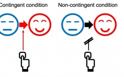 Schematic of the Contingency Conditions (Figure 1) (IMAGE)