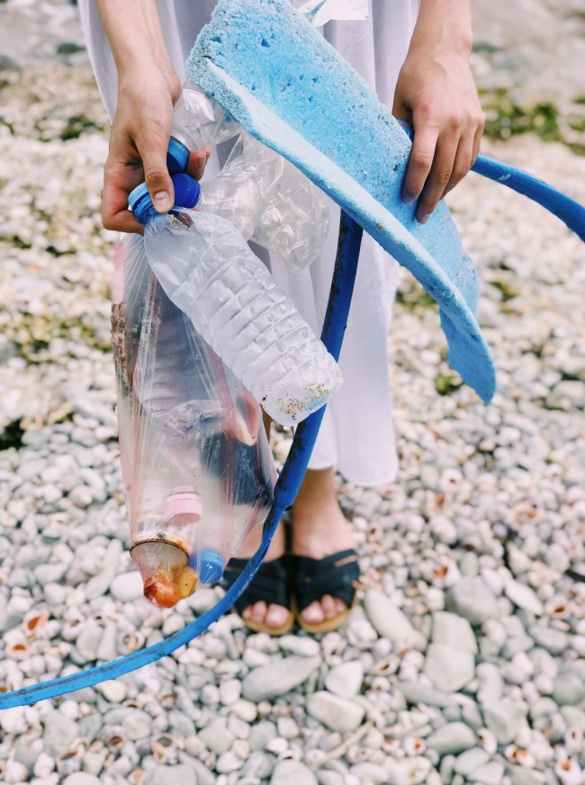 Seaweeds Can Save the Environment from Plastic Pollution