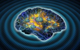 Findings link healthy sleep to brain-wave bursts that mathematically mimic earthquakes.