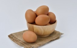 Man dies after eating 41 eggs for bet with friend